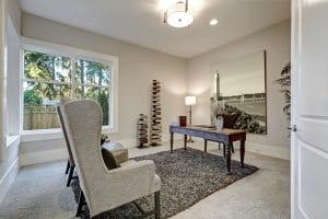 Rug and Carpet in room